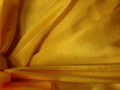 Rental store for LINEN 90x156 GOLD BENGALINE in Ft. Wayne IN