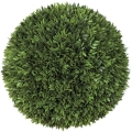 Rental store for BALL - 12  PODOCARPUS in Ft. Wayne IN