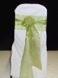 Rental store for CHAIRTIE GREEN ORGANZA 7.5x120 in Ft. Wayne IN