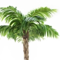 Rental store for PALM TREE YUCCA TRUNK 36 - 48  TALL in Ft. Wayne IN