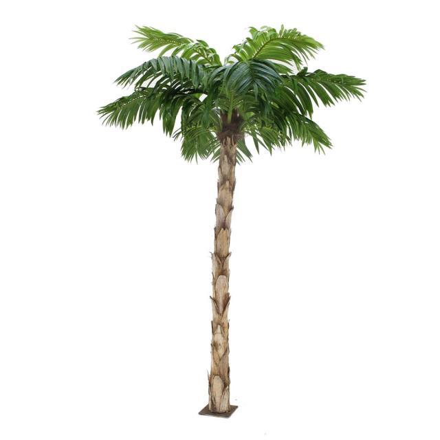 Palm Tree Yucca Trunk 60 70 Inch Tall Rentals Ft Wayne In