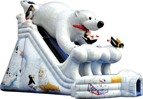 Where to find ARCTIC PLUNGE SLIDE w BEAR 39x21x28 TALL in Ft. Wayne